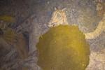ψηφιδωτό, Αμφίπολη, Ηνίοχος, αποκάλυψη, μυστικό, ένοικος, τάφος