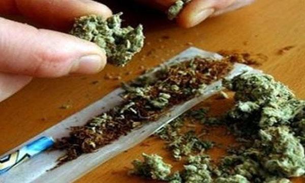 χασίς, μαριχουάνα, κάναβη, χρήστες, κίνδυνοι, υγεία, επιστημονική μελέτη