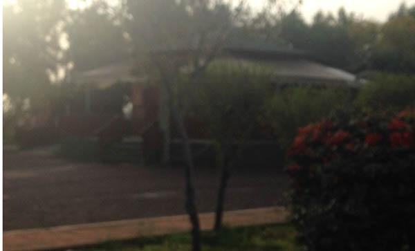 κυλικείο, λειτουργία, κλειστό, παιδική χαρά, πάρκο πόλης, Άνω Λιόσια, δήμος Φυλής