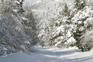 Χιονισμένη Πάρνηθα
