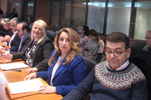 δημόσιος απολογισμός, 2013, δήμος Ιλίου, δήμαρχος, Νίκος Ζενέτος