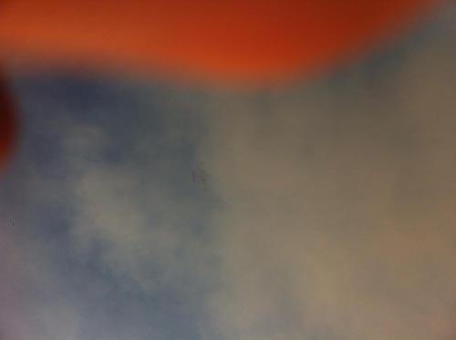 πυρκαγιά, Χασιά, μονή κλειστών, χαράδρα, πυροσβεστική, Φυλή, δήμος Φυλής