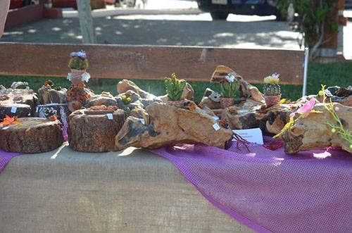 1ο Welcome Spring Festival, σύλλογος Νέων Φυλής, δήμος Φυλής