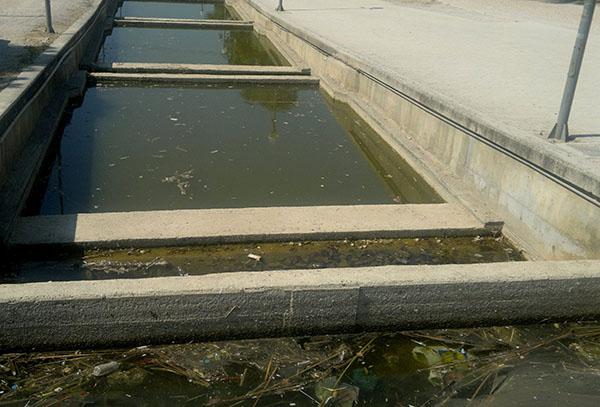 Νικος Ζενετος, δημος Ιλιου, παρκο Τριτση, καθαρισμος