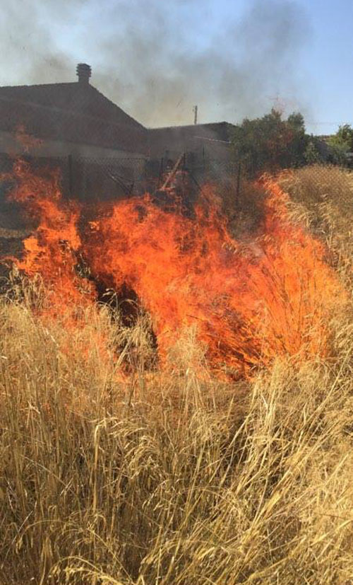φωτιά, πυρκαγιά, Ζωφρια, ξερά χόρτα, δήμος Φυλής