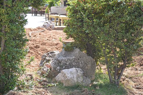 Φυλή, δημοτική κοινότητα, δήμος Φυλής, Χασιά