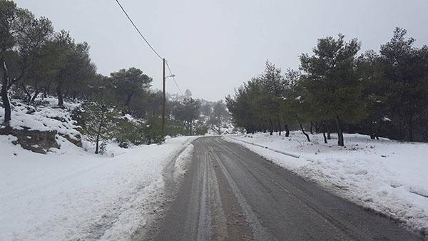 χιόνι, Φυλή, δήμος Φυλής, Άνω Λιόσια
