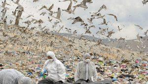ΧΥΤΑ Φυλής, απορρίμματα, σκουπίδια