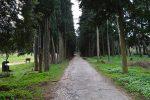 Τατόι, πρώην βασιλικό κτήμα Τατοΐου