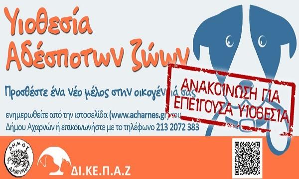 epeigousa_yiothesia