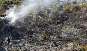 πυρκαγιά, Φυλή, ρέμα Γιαννούλας