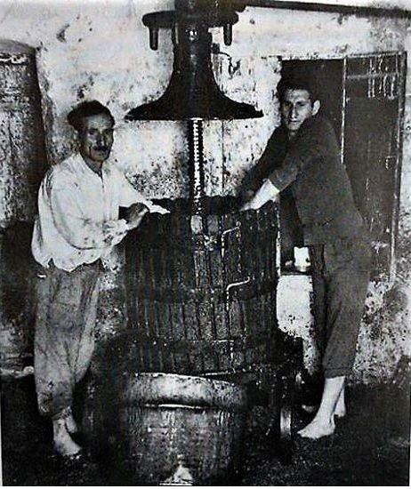 Μιχάλης  Μενιδιάτης ( Καλογράνης )  1954