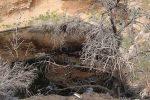 Επικίνδυνα απόβλητα στη θέση Πέτρα Εβραίου στη Φυλή