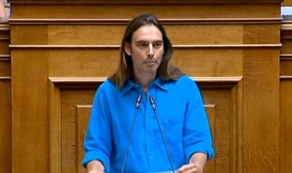 Κρίτων Αρσένης, βουλευτής Μέρα25