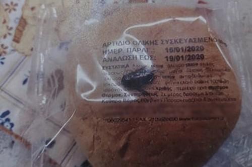 Αποτέλεσμα εικόνας για Βρέθηκε κατσαρίδα στο ψωμί